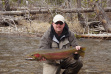 Fishing for steelhead on the upper Salmon River in 2013