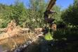 Habitat restoration- placing tree root wad