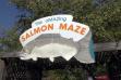 salmon_maze