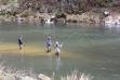 spring_steelhead_fishing_2018_clearwater