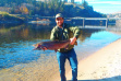 Big steelhead at Lenore Boat Ramp on Clearwater River in fall of 2016.
