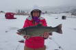 Henry's Lake Ice fishing hybrid cutthroat rainbow trout with happy kid