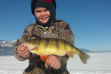 girl with her perch from ice fishing