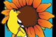 Idaho Bird by Bird Program Logo