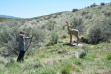 bp_-_boise_river_wma_archery_range6