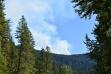 Graham mountain fire