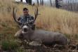 hunter with his mule deer buck October 2015