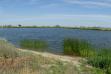 Redtop Pond