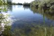 Wilson Springs Pond