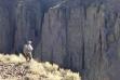 Brian Perkes, Owyhee Desert, Southwest Region,