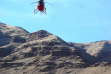 a bighorn sheep being air lifted by helicopter for research in Hell's Canyon January 2006