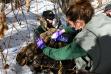 sierra_robatcek_applying_antibiotic_spray_to_cow_moose_in_hailey_february_2021