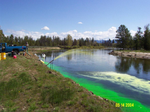 Applying Rotenone to the North Fork Payette River above Lake Cascade.
