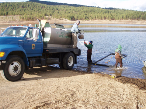 Phillips Reservoir perch being loaded onto transport truck to be moved to Lake Cascade