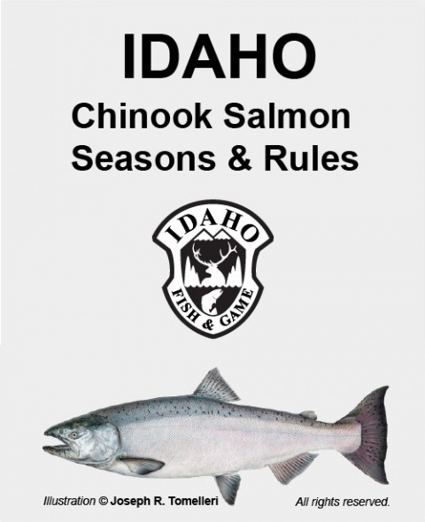 Chinook Salmon seasons and rules pamphlet