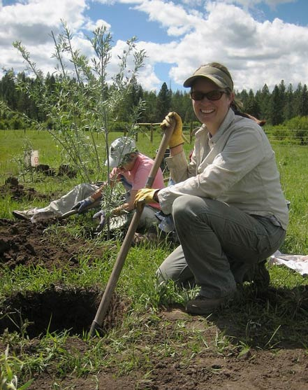 Kirsten planting willows at Lawyer Creek. IDFG Photo by Mary Dudley