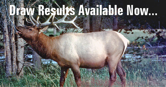 Big game controlled hunt drawing results online idaho for Idaho fish and game hunter report