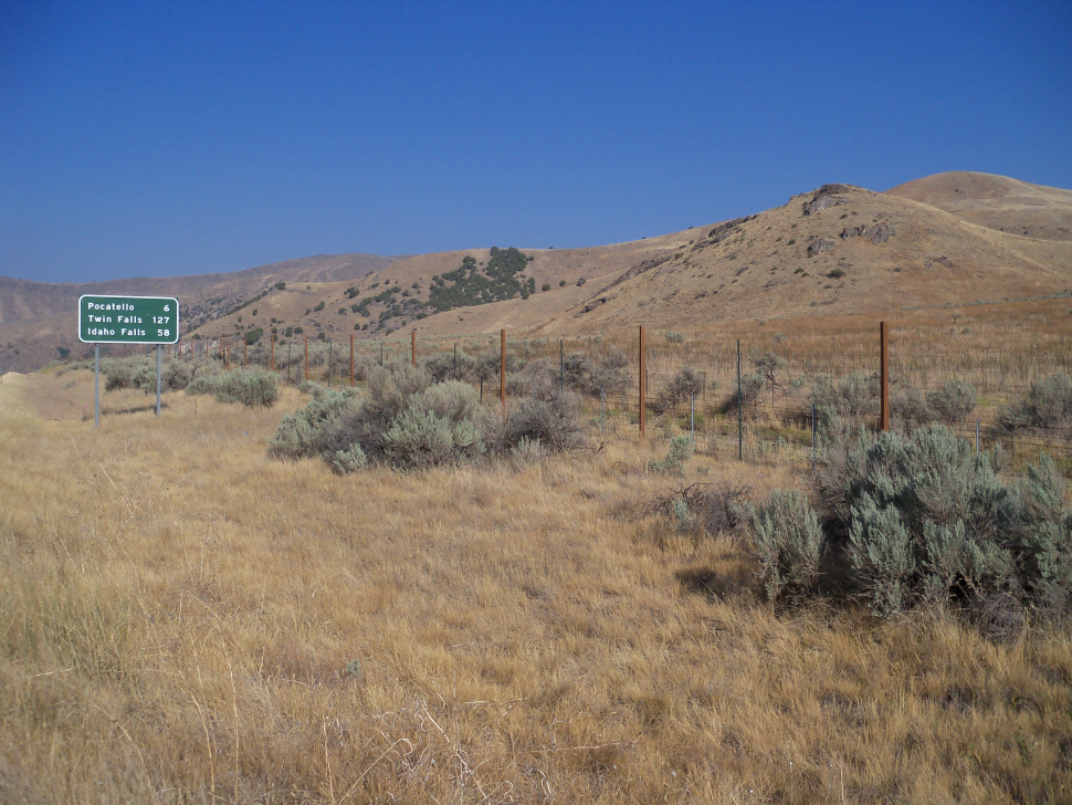 I 15 mule deer fence near pocatello complete idaho fish for Idaho fish and game
