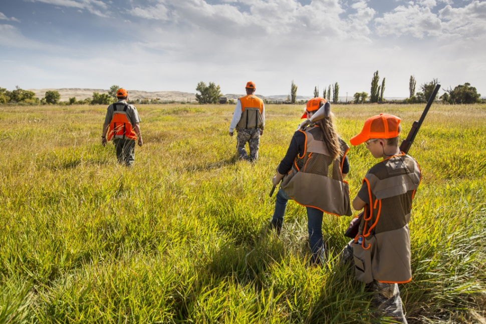 Youth pheasant hunt at c j strike wma idaho fish and game for Fish and game idaho
