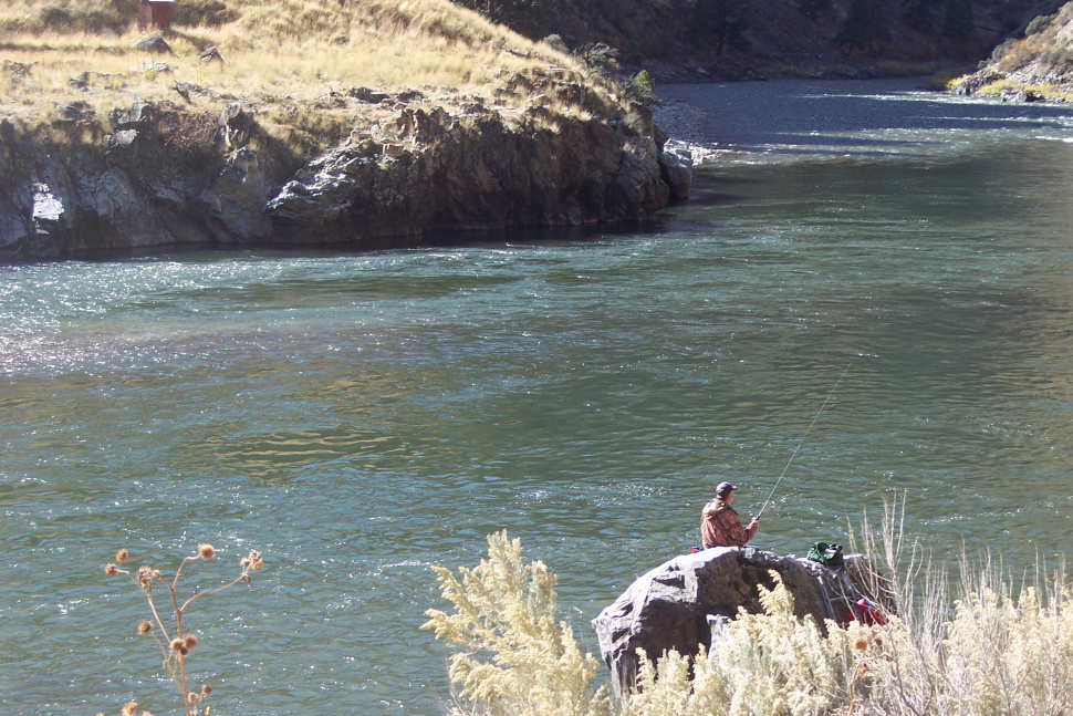 Weekly steelhead fishing summary for salmon river 10 31 for Idaho fish and game hunter report