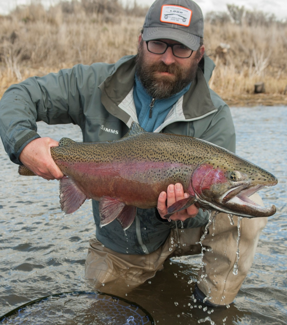 Pocatello man sets new catch and release record for for Fish and game idaho