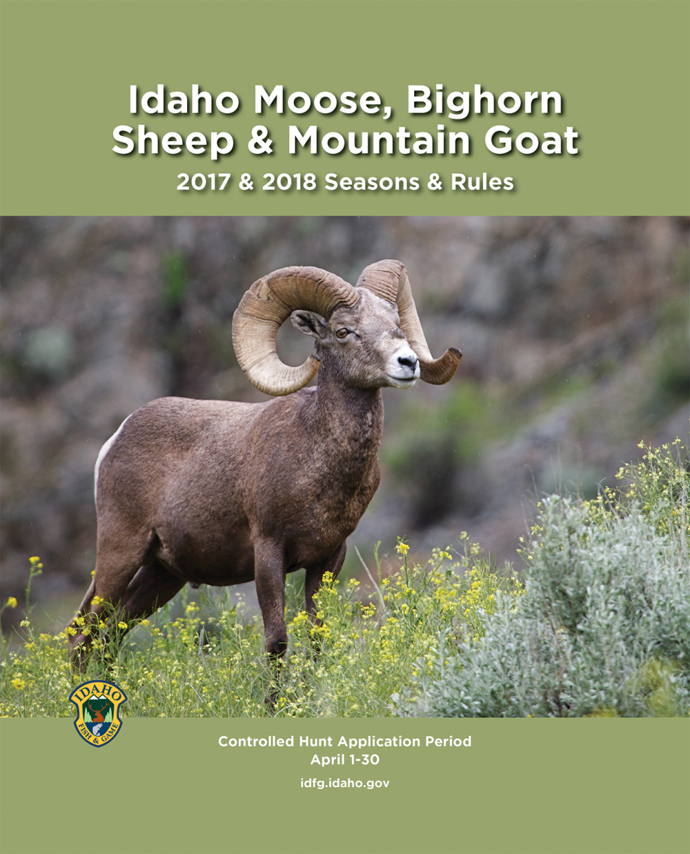 Moose bighorn sheep and mountain goat seasons and rules for Idaho fish and game regulations