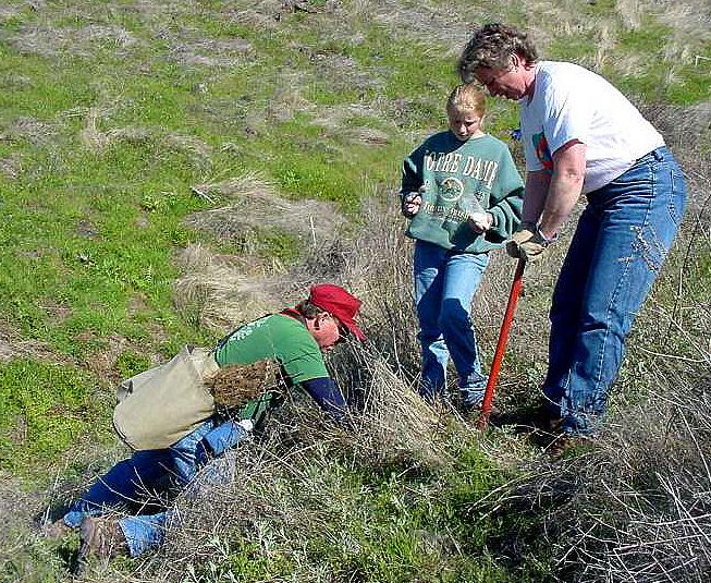 Volunteers needed to plant for wildlife idaho fish and game for Idaho fish and game hunter report