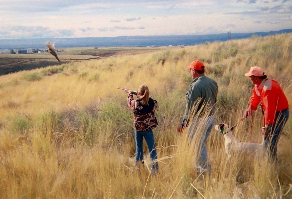 pheasant hunting pictures - 970×661