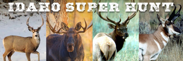 superhunt-spotlight-2019-thumbnail-for-featured-2