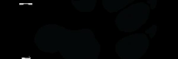 Project WILD logo