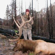 hunter with her trophy elk vertical shot November 2013