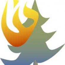 Fire Icon