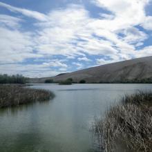 dunes_lake_bruneau_dunes_state_park
