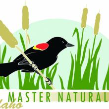 idaho_master_naturalist_logo_small