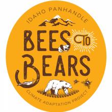 Bees2Bears Logo