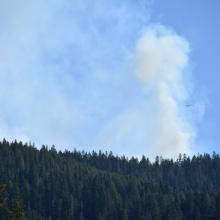 Graham Ridge Fire