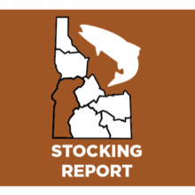 fishstocking-icon-southwest-region