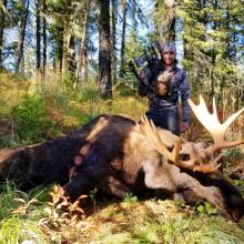 moose_1