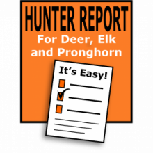 Hunter Report Icon