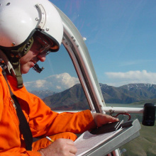 Aerial Surveys