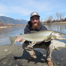 Catch/rel record bull trout 2020