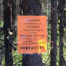 Bear Capture Sign