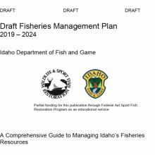 draft-fmp-2019-2024