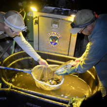 Bruneau Electrofishing3.jpeg