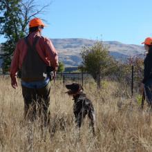 pheasant hunters