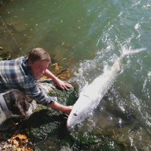 boy with his dog and sturgeon
