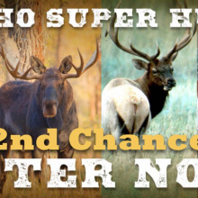 Superhunt 2nd Chance
