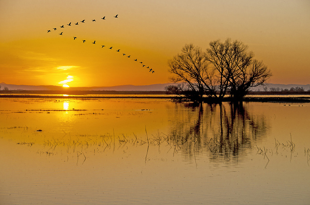 Sunset Formation by Steve Corey on flickr