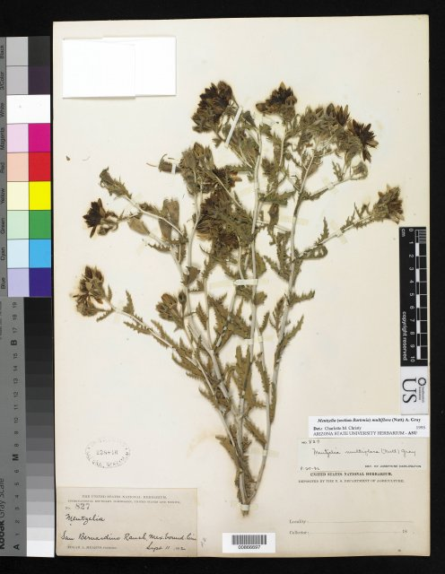 http://collections.mnh.si.edu/services/media.php?env=botany&irn=10279736