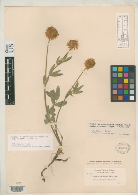http://collections.mnh.si.edu/search/botany/?irn=2096653
